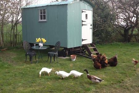 Willow Farm Shepherds Hut - South Scarle, Newak