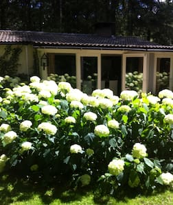Romantic cottage in Lage Vuursche - Ház