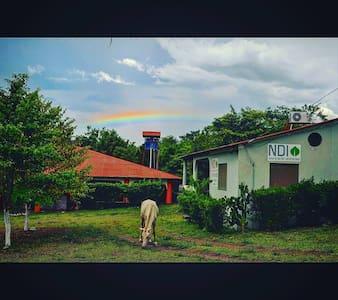 Amazing Home on Ometepe - Moyogalpa - Haus
