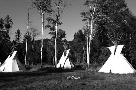 """Two Socks"" Tipi in the Woods - Tipi (indián sátor)"