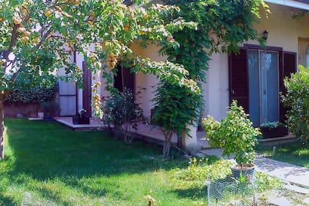 The Olive Tree Villa - Capena - Villa