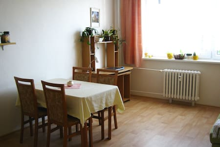 Clean and bright room in Hradec Králové - Apartment