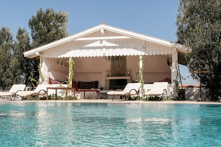 Charming villa in large Olive grove