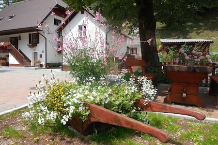 ROOM B CUDER FOR 2 PERSON - Bovec - Bed & Breakfast
