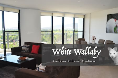 White Wallaby Penthouse Apartment - Canberra