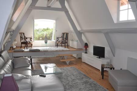 TRÈS BEL APPARTEMENT - Arcachon - Apartment