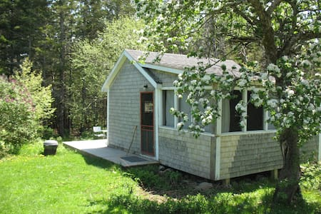 Artist's cabin on Yellow Birch Farm - Cabin