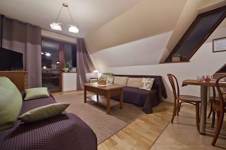 Apartment Smrek 2 Zakopane comfort