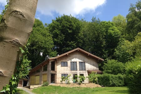 Inposing wooden house - House