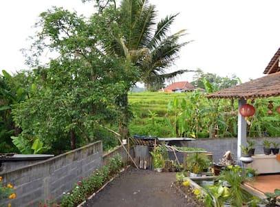 Homestay Bundaiyah Bugel Salatiga - Salatiga City