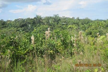 Luxuriant- Garden Chalet East  - Quepos - Chalet