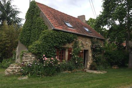 Petite maison  dans jardin coloré - House