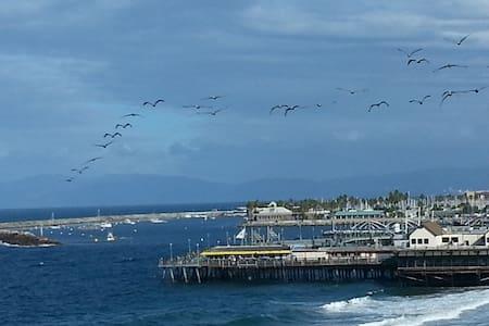 Ocean Front Luxury Comfort + Bikes - Redondo Beach - Apartment
