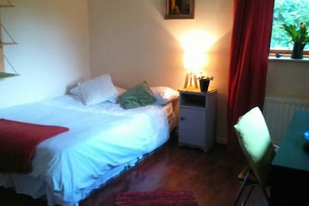 Spacious Room in Dublin - Kilmacud