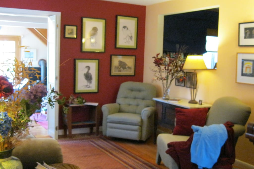 Shared space. Living room
