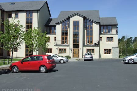 Modern, well equipped & cosy apartment - Naas - Lejlighed