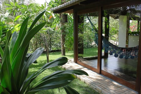 casa tropical vegetation - House