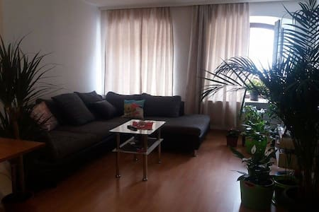 Big, bright room in the heart of Villingen! - Apartment