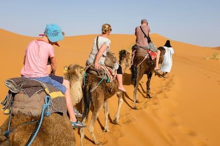 Merzouga Camp Camel treks. - Tienda de campaña