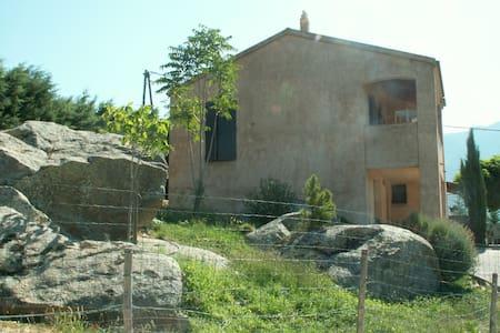 rez chaussée indépendant sur jardin - Calacuccia