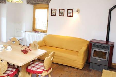 Apt. Dolomiti 1 - Apartment