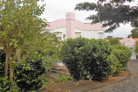 Pink House - Pico Island Azores - Madalena - Hus
