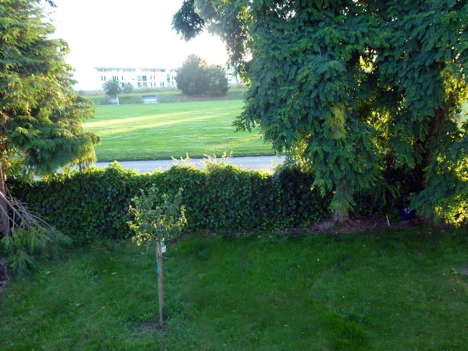 jardin et vue arrière maison
