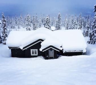 Flott familiehytte Kvitfjell Vest - Cabin