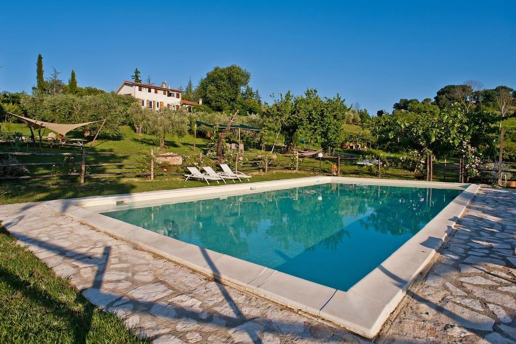 near Rome  Villa with swimingpool