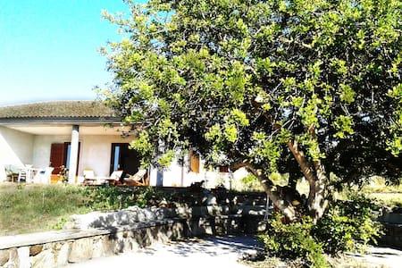 Sardegna... Alghero... Mare e Relax
