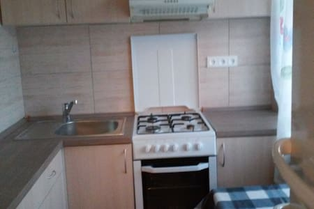 A centrally located 1-bedroom flat - Narva - Apartment