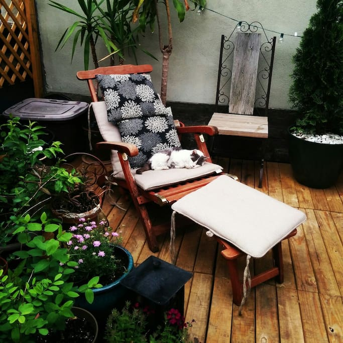 Lovely Boerum Hill - PrivateTerrace