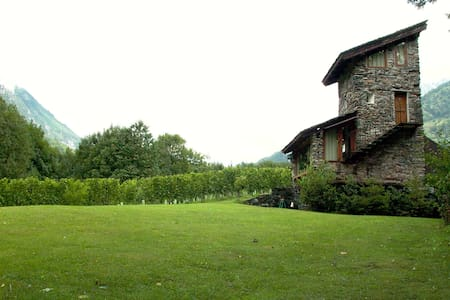Torre Scilano, Chiavenna(tower in the vineyard) - Piuro - Castle