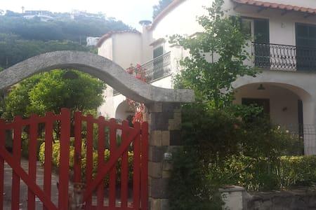 Villa L'Innominata - Terra - Ischia - Villa