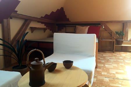 Spacious attic room close to the city centre - Olmütz - Wohnung