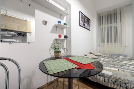 1 room nice apt in Lviv! - Lviv - Appartement