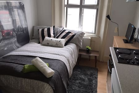 Cosy Central London Studio - London - Apartment