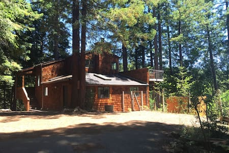 Canyon View Cabin in the Redwoods - 一軒家