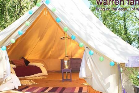 Sage, 6m bell tent on Pemb Path - Pembroke