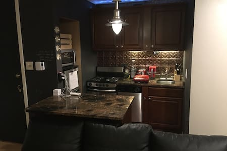 Gorgeous Studio in Lakeview! - Chicago - Apartment