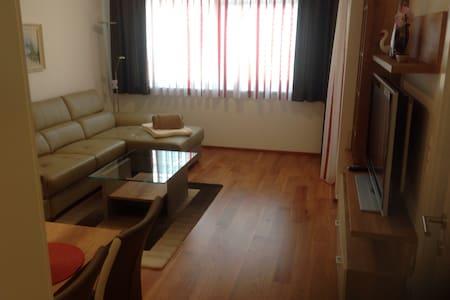 Ruhige Wohnung mit Garten 46 qm - Apartamento