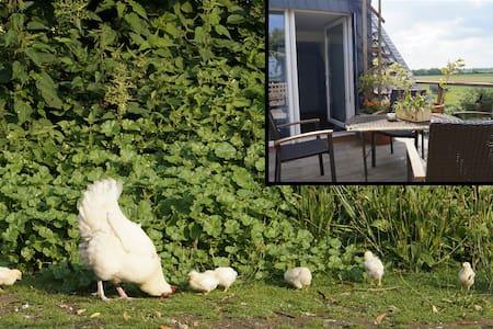 Schwalbennest 2 Zaunkönigzimmer  - Kalkar - Bed & Breakfast