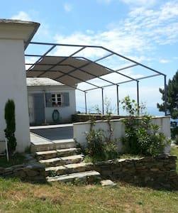 Acortelina - House