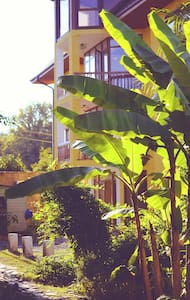 """Гостевой """"Дом на Лесной"""" в Пицунде рядом с морем - Pitsunda - Gästehaus"""