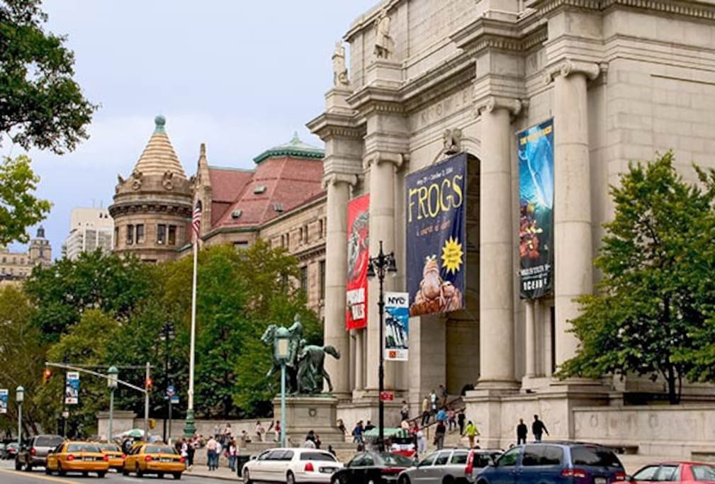 A Short Trip to some of the City's Best Museums