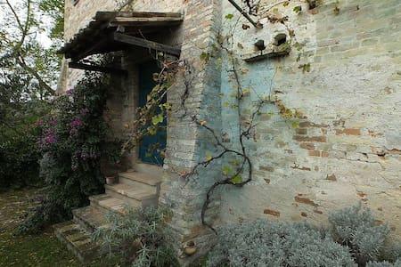 Appartamento con giardino - Leilighet