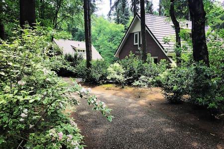 Vrijstaande bungalow op bospark Garderen - Bungalow