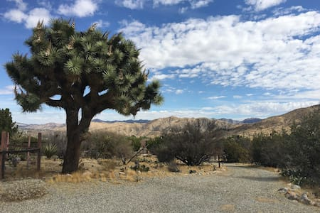 Mid-Century Desert Ranch - Morongo Valley - Morongo Valley