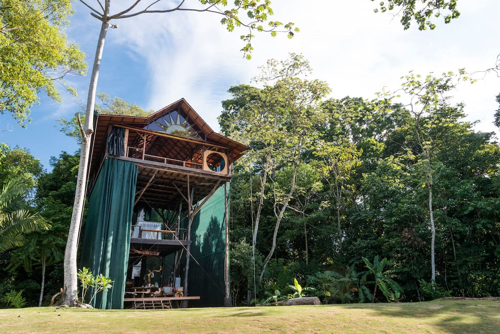 Huge Treehouse in Jungle