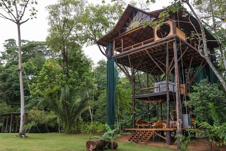 Huge Treehouse in Jungle  - Matapalo - Cabana en un arbre